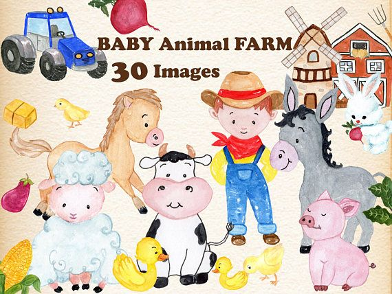 Baby Animals Farm clipart: \