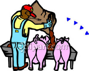 Clipart Picture of a Farmer Feeding His Pigs.