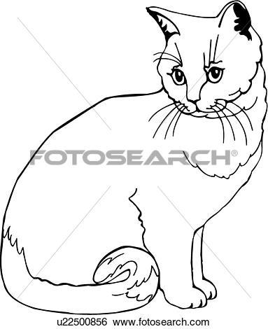 Clip Art of , animal, breeds, british, cat, cram, feline, short.