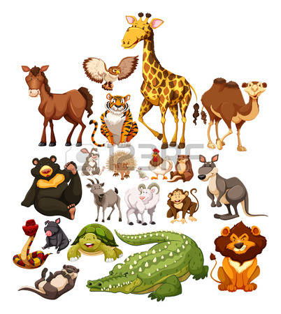 1,564,668 Animal Stock Vector Illustration And Royalty Free Animal.