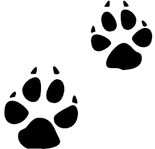 Free Animal Footprints Cliparts, Download Free Clip Art.