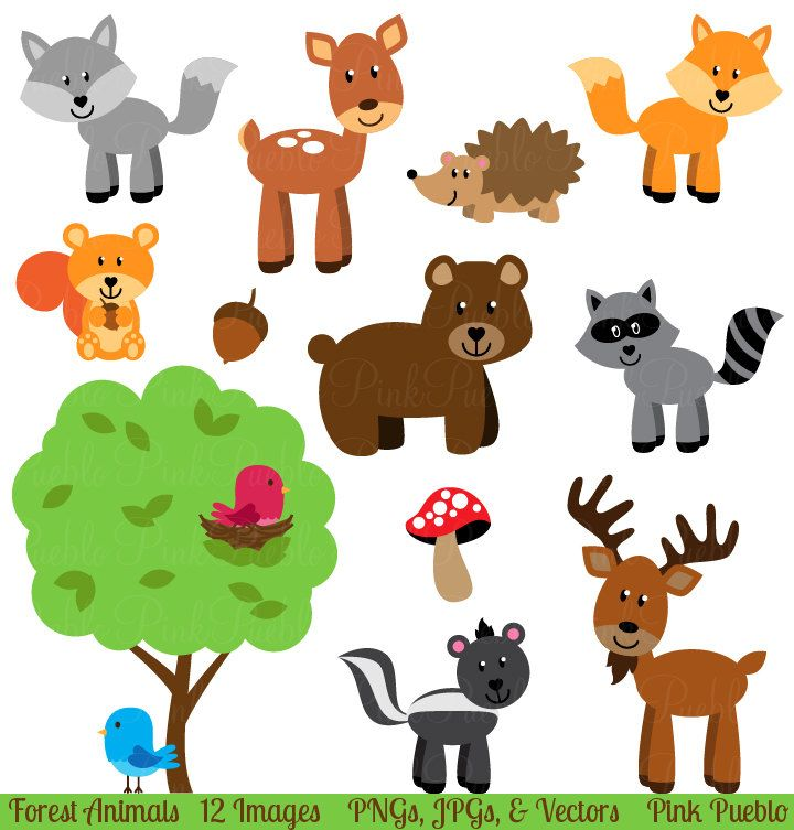 Free download Free Forest Animal Clipart for your creation.