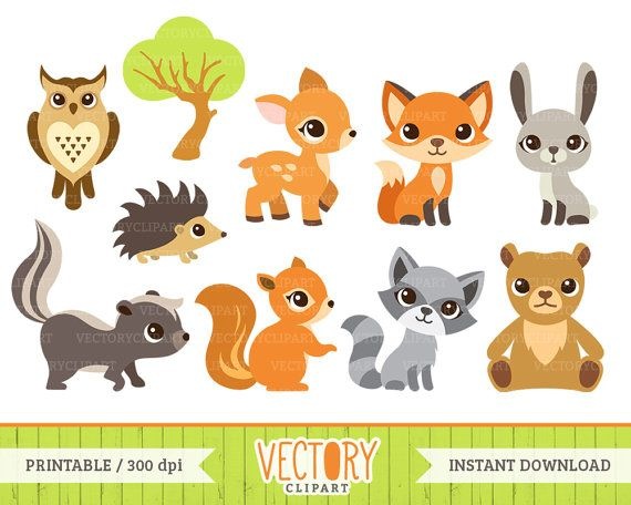 10 Woodland Animal Clip Art, Forest Animals, Animal Clipart.