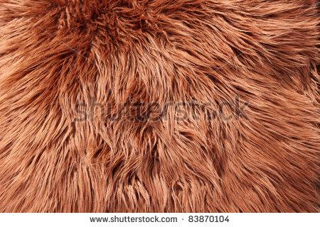 Fur Clipart.