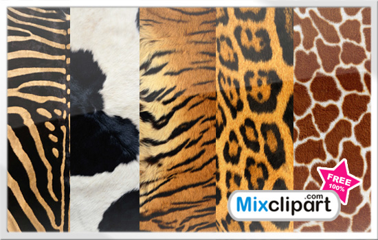 Animal Fur Clipart Clipground