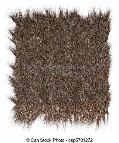 Animal fur clipart.
