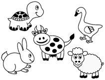 Turtle Black White Animal Series Stock Illustrations.