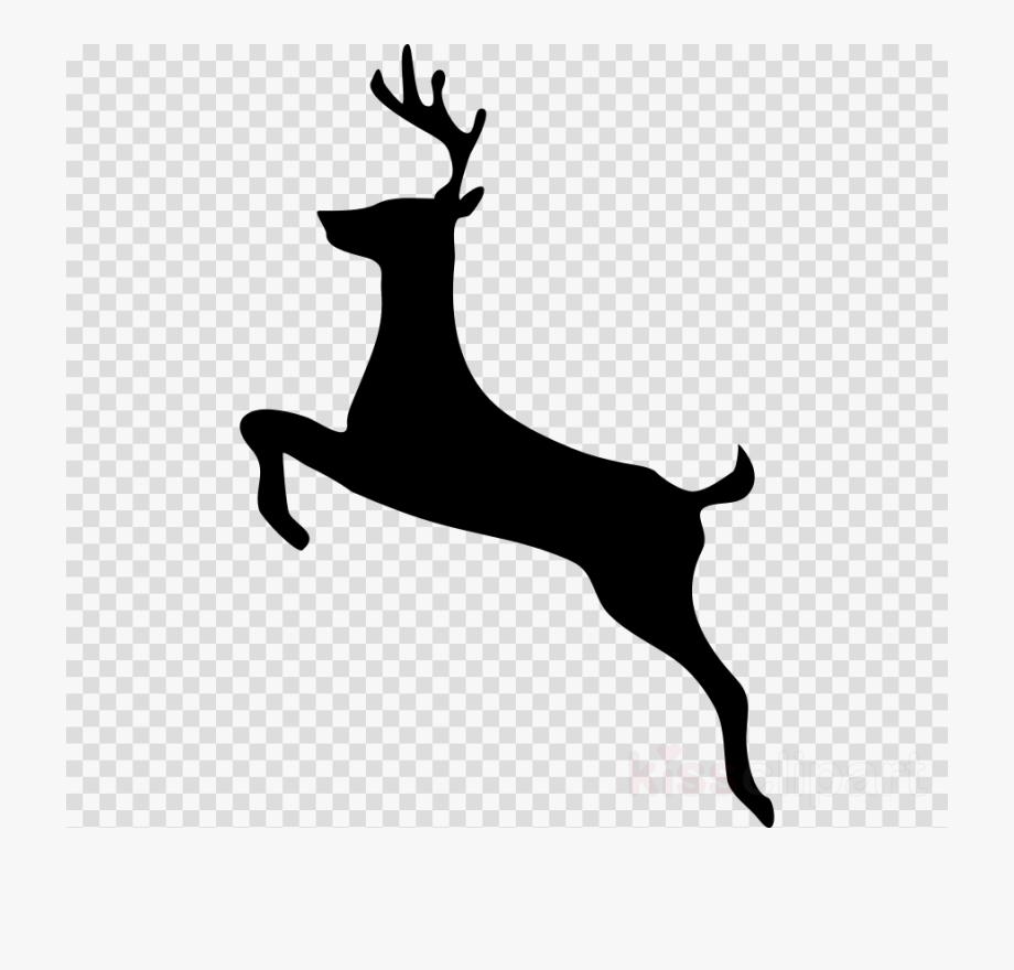 Deer Illustration Reindeer Transparent Png Image Clipart.