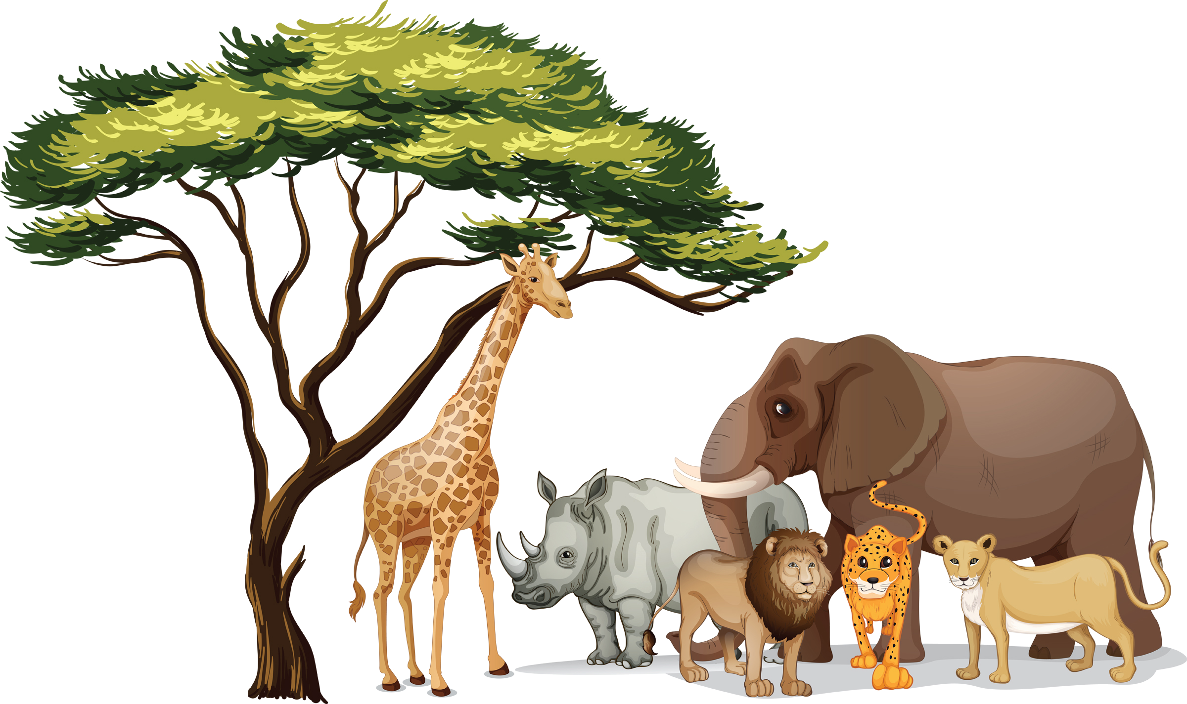 Animals PNG Free Clipart Images.