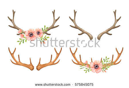 Antler Stock Images, Royalty.