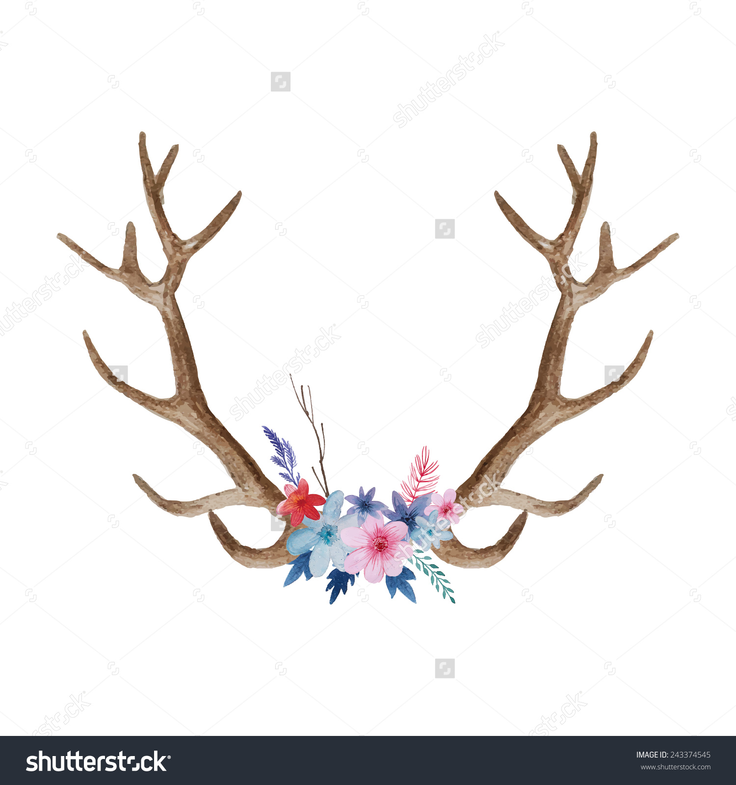 Watercolor Floral Antler Hand Drawn Vintage Stock Vector 243374545.