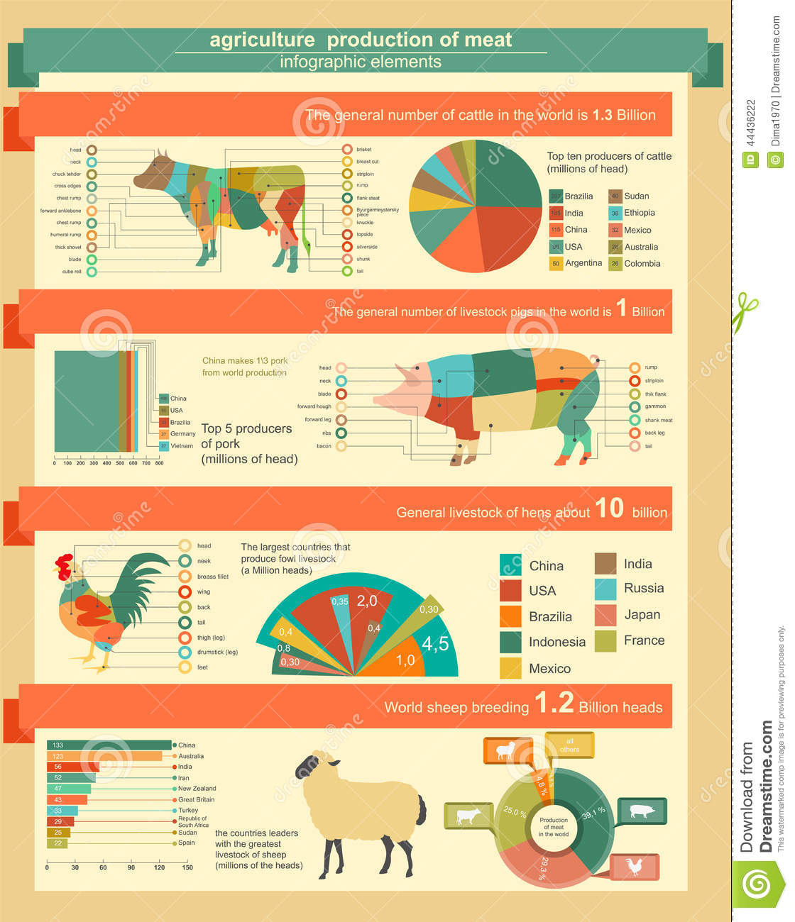 Agriculture, Animal Husbandry Infographics, Vector Illustrations.