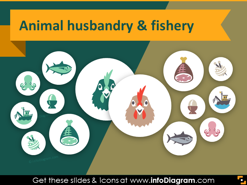 33 modern flat agriculture icons for animal husbandry ppt slides.