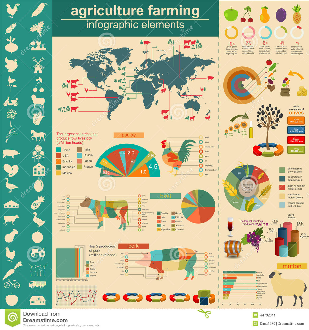Agriculture, Animal Husbandry Infographics, Vector.