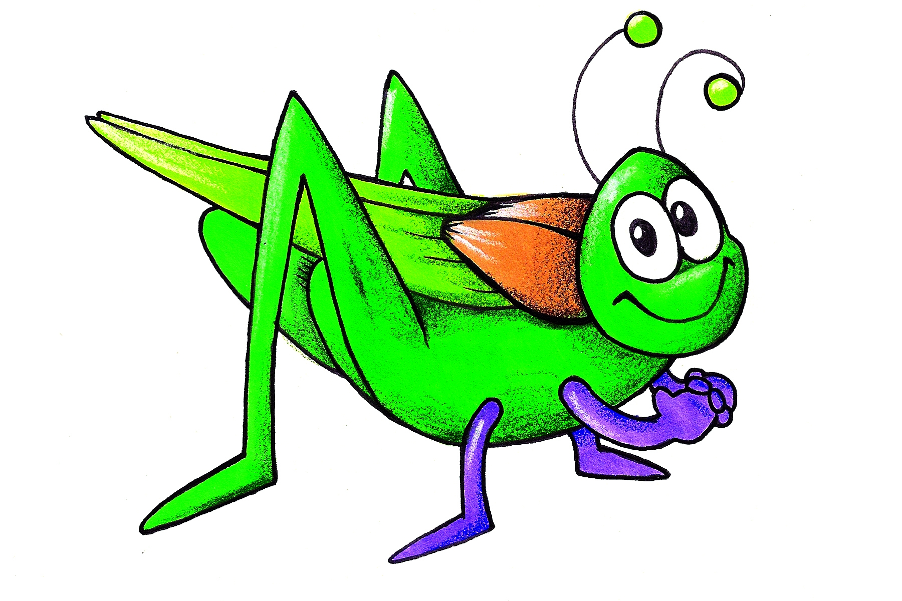 Cricket animal clipart.
