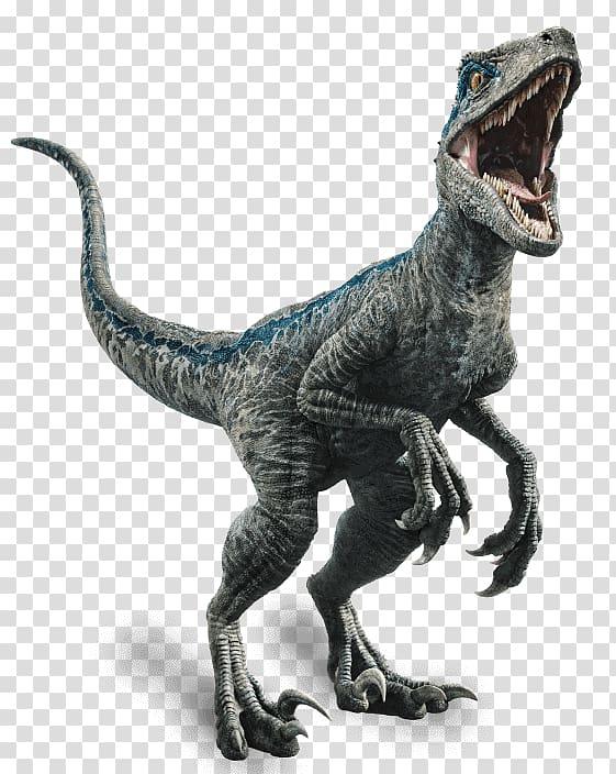 Velociraptor Owen Jurassic World Evolution Dinosaur Jurassic.