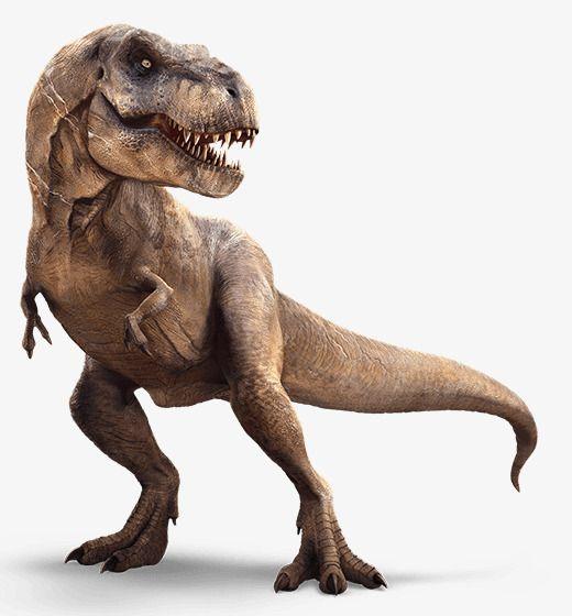 Dinosaur Animals in 2019.