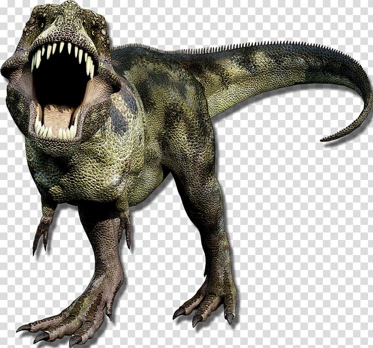 Jurassic Dinosaurs Jurassic Park Gorgosaurus Book, dino.