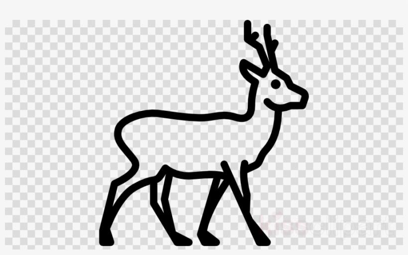 Icon Clipart Reindeer Disney\'s Animal Kingdom.