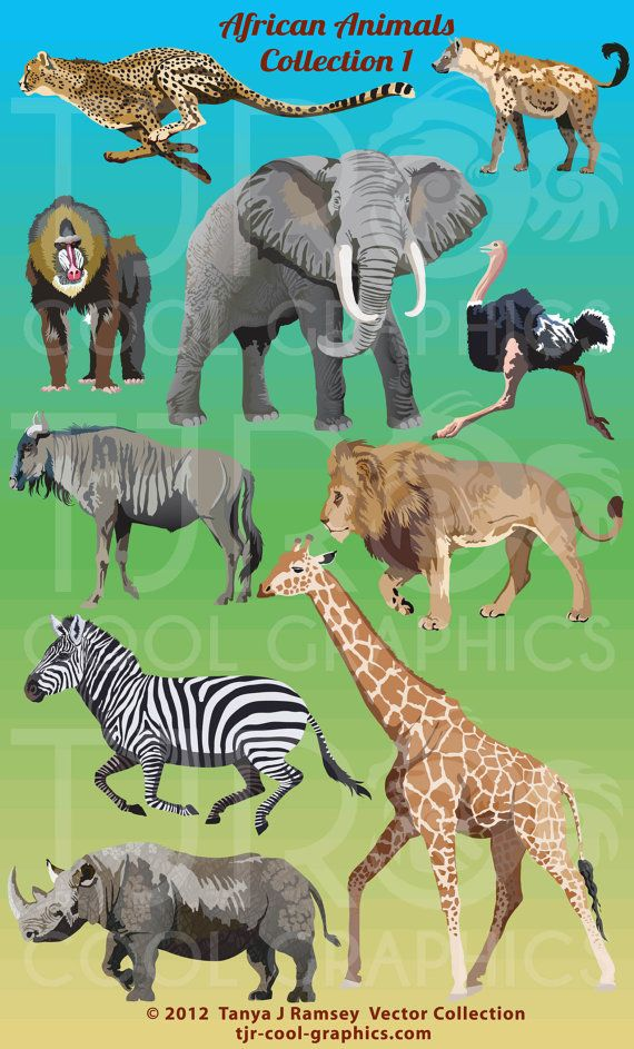 African Animals 1 Digital Realistic Clip Art, PNG, Printable.