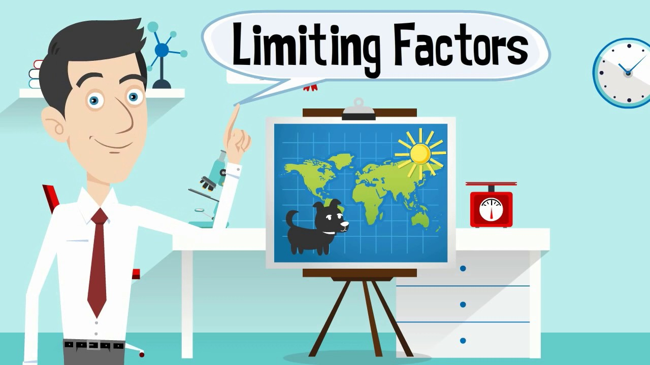 Limiting Factors in an Ecosystem.