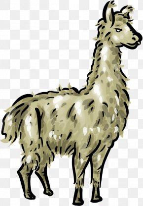 Llama, PNG, 512x512px, Cartoon, Alpaca, Animal Figure.