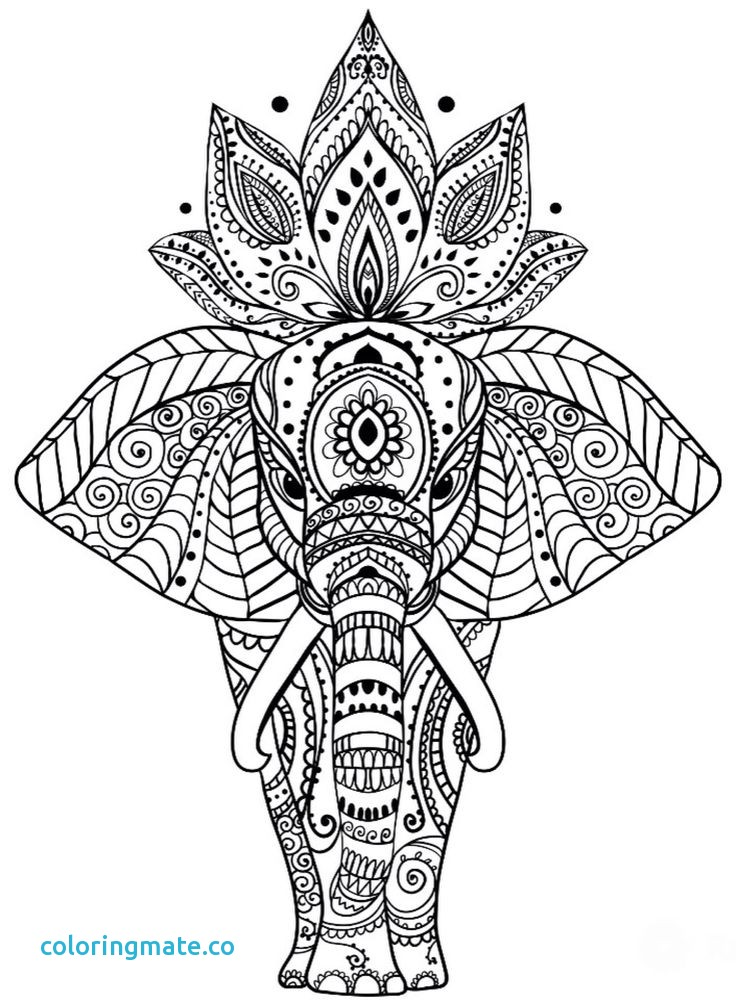 Coloring Pages Mandala Animal.