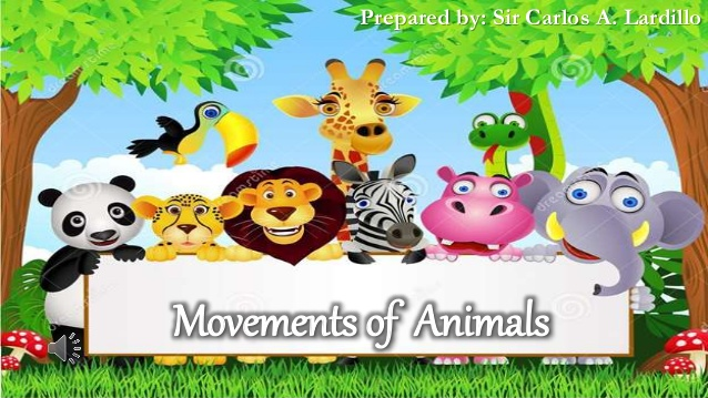 Movements of Animals.