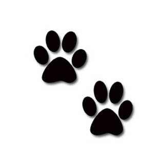 Animal Paw Prints Clipart.