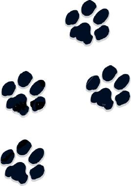 clipart dog print trail #9