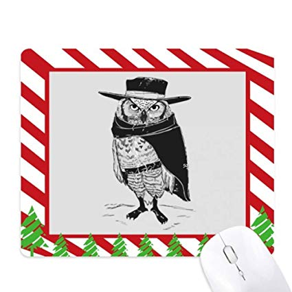 Amazon.com : Owl Bird Personification Animal Mouse Pad Candy.