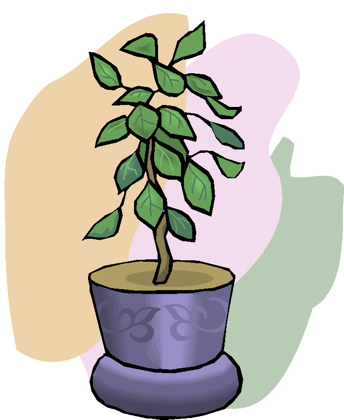 Animal and plant clipart.