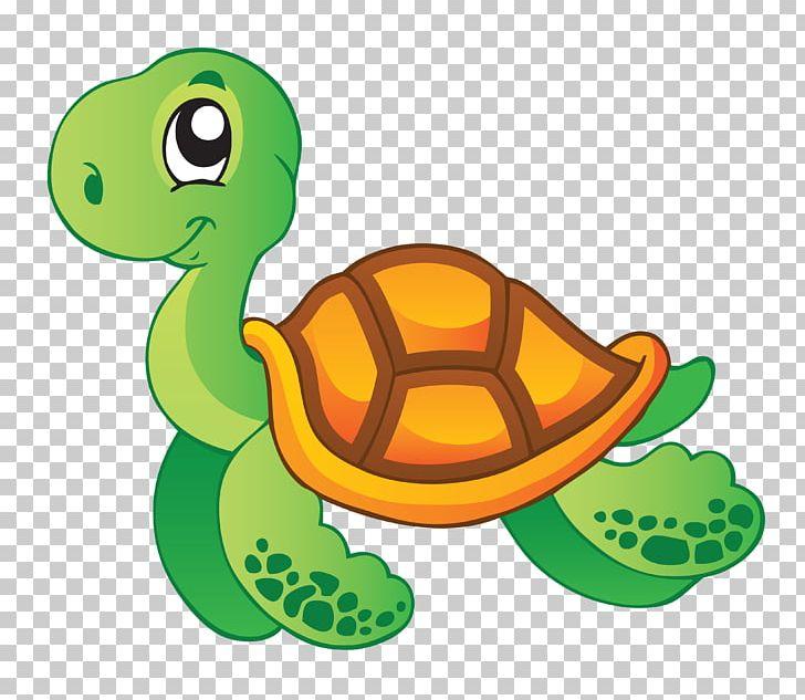 Sea Turtle Aquatic Animal PNG, Clipart, Animal, Animals.