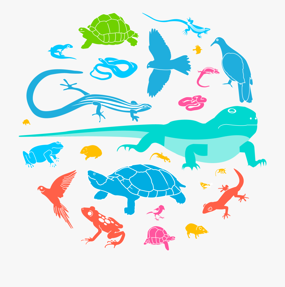 Wildlife Clipart Animal Population, Cliparts & Cartoons.