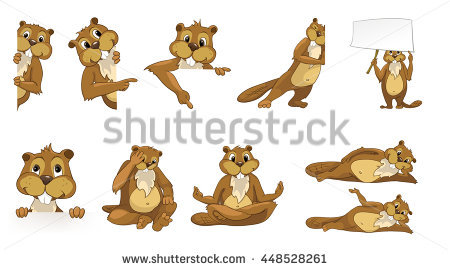 Beaver Stock Images, Royalty.