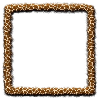 Borders and Frames: Animal Print Fur Effect Borders and Frames Clip Art Set.