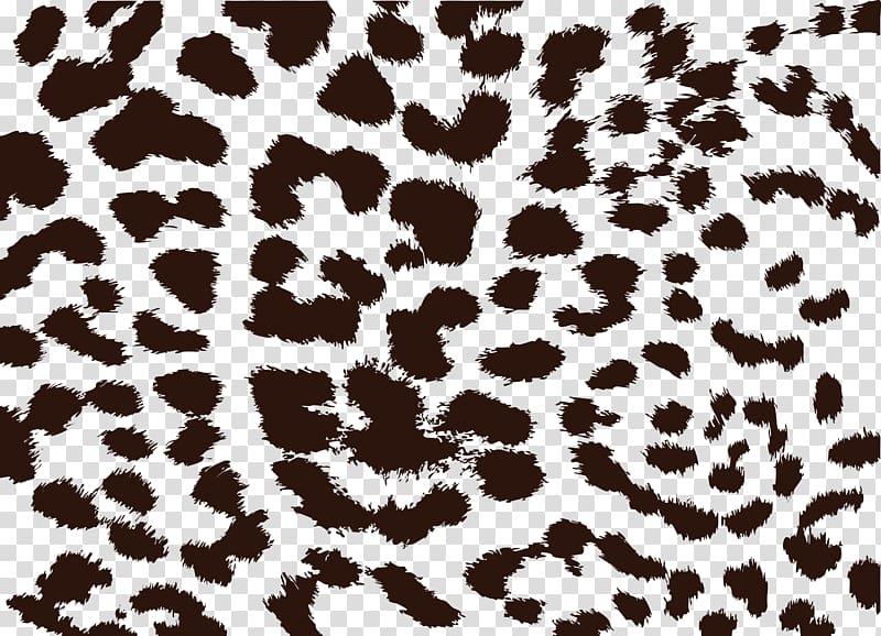 Black and blue spots, Leopard Cheetah Animal print Jaguar.