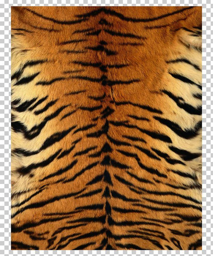 Siberian Tiger Leopard Fur Texture Pattern PNG, Clipart.