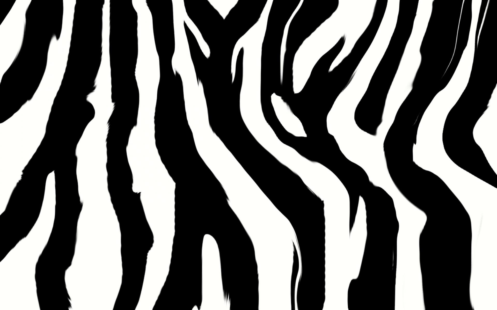 Animal print Zebra Desktop Wallpaper Clip art.