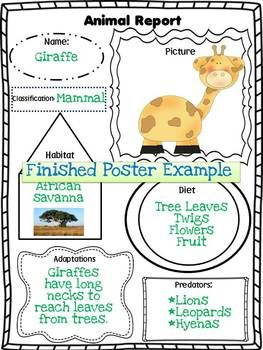 Animal Report Poster Form.