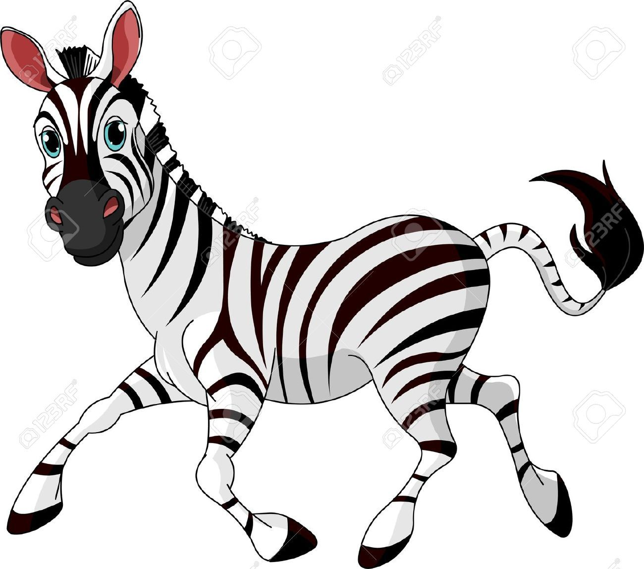 Image result for clipart images of zebra.