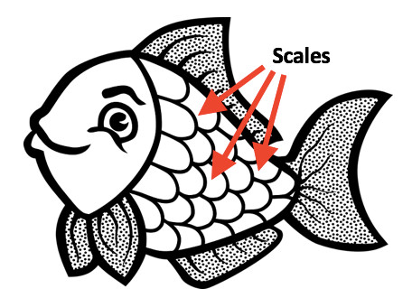 1347 Scales free clipart.