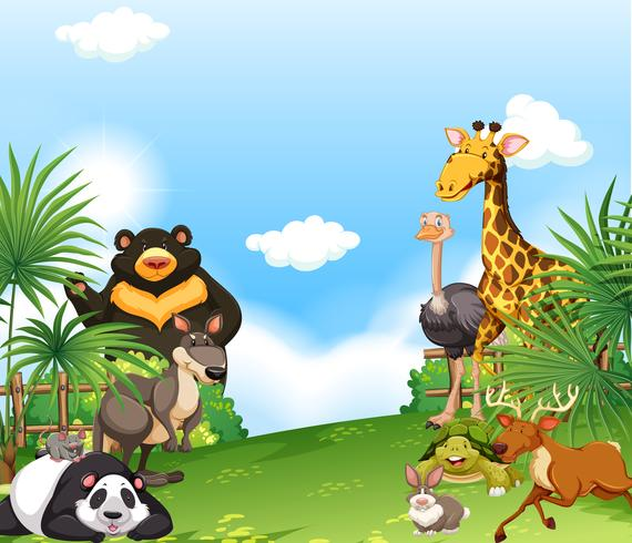 Background scene with wild animals in the field.