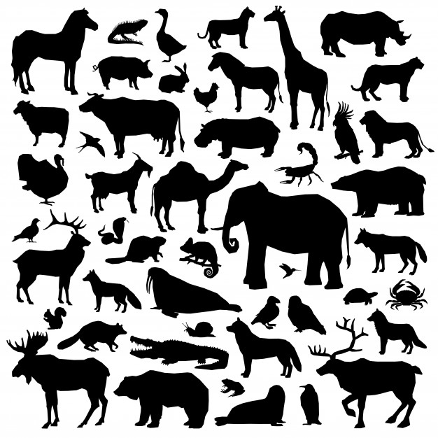 Animal Silhouettes Vectors, Photos and PSD files.