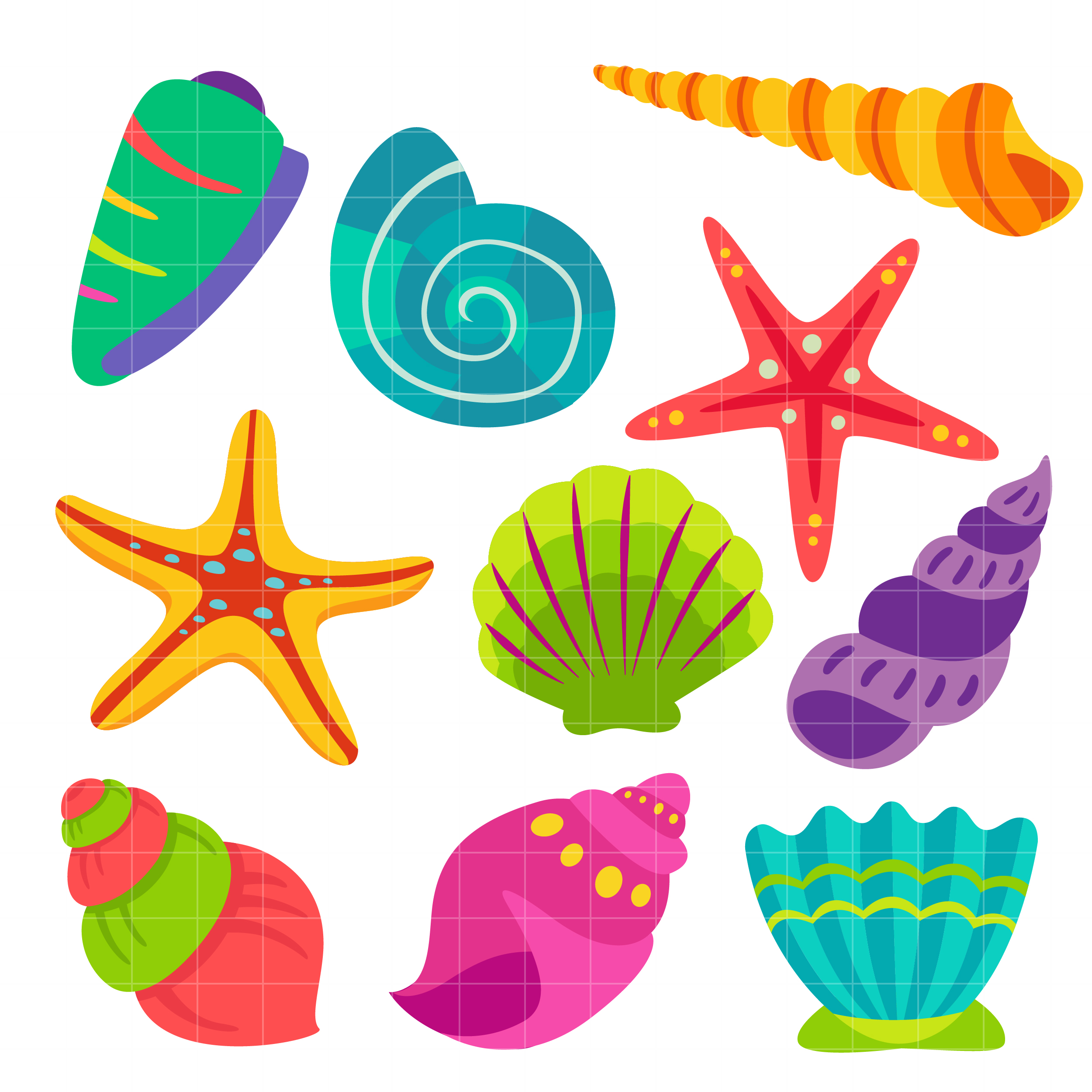Colorful Seashell Clipart Png.