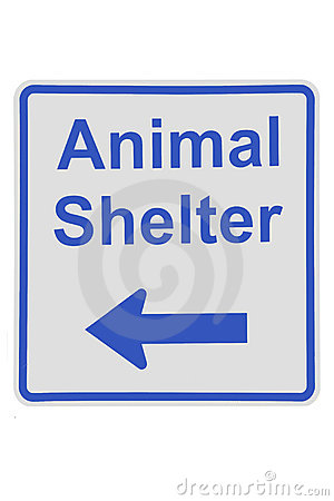 Animal Shelter Sign Royalty Free Stock Image.