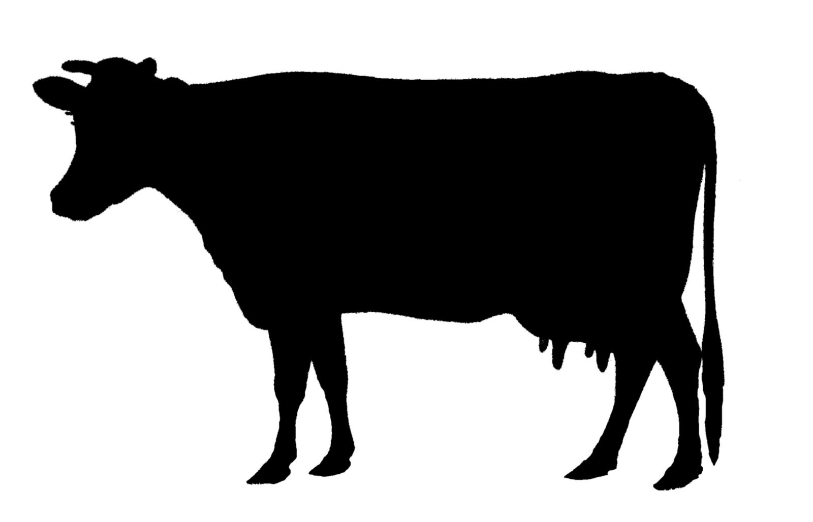Animal Silhouette.