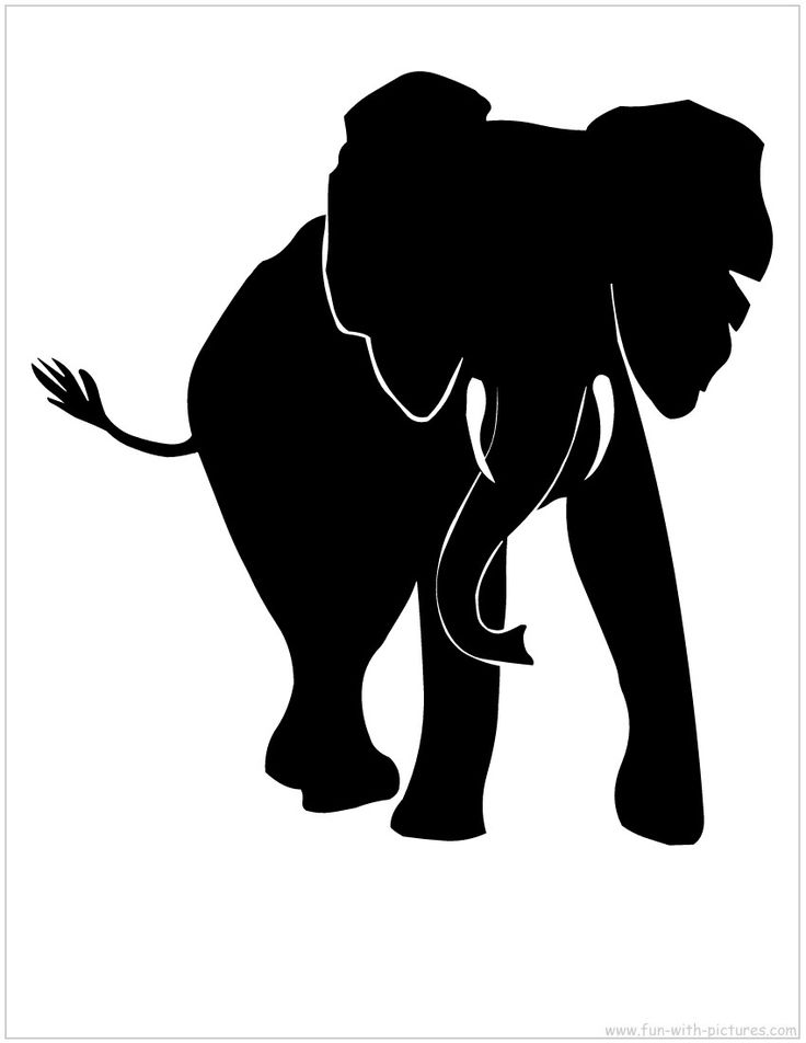 25+ best ideas about Animal Silhouette on Pinterest.