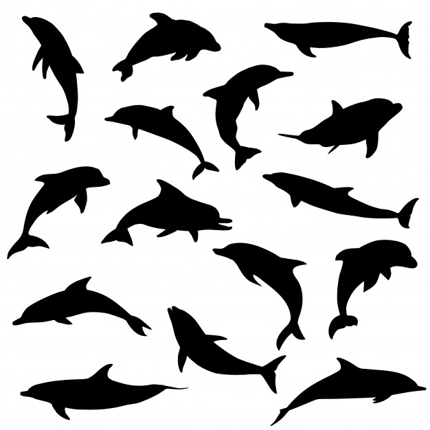 Dolphin sea animals silhouette clip art vector Vector.