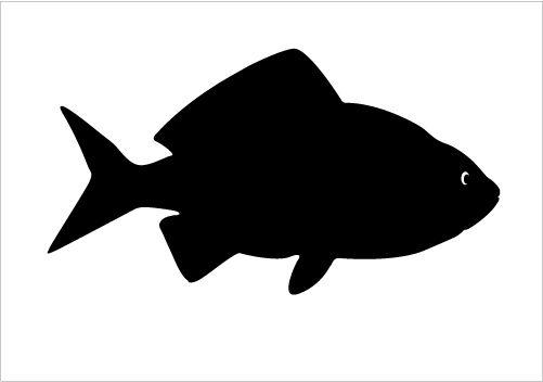 Big Fish Silhouette Graphics Silhouette Graphics.